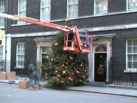 A Christmas Tree for Downing Street