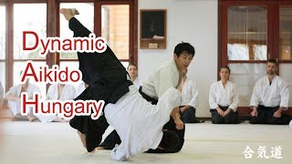 Dynamic and sharp Aikido in Hungary
