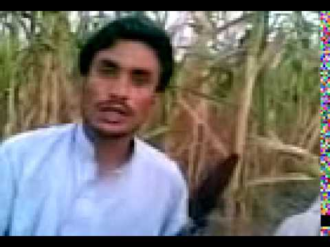 pashto  funny news BAJAUR AGENCY