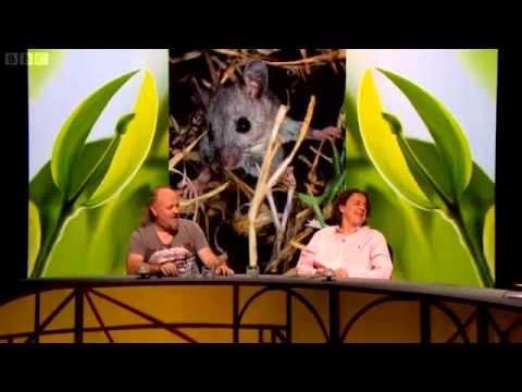 QI XL - Series J Episode 11