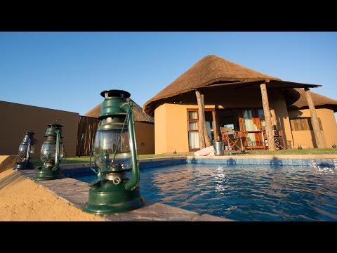 Mopane Bush Lodge Experience