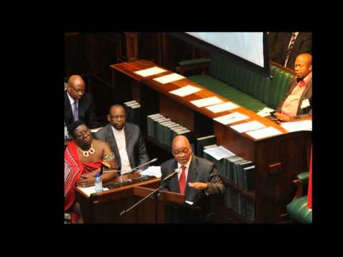 Listen -- Zuma: Solve African problems the African way