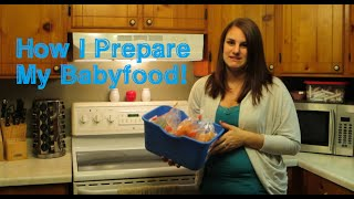Baby Food Preparation (4 Different Ways) | Our Lives, Our Reasons, Our Sanity