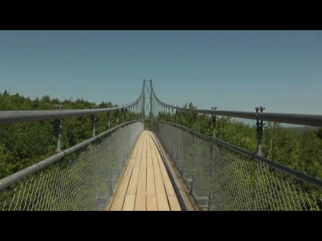 420ft Suspension Bridge