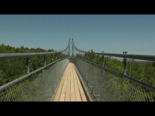 420ft Suspension Bridge