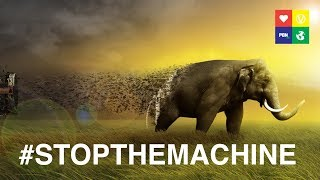 #STOPTHEMACHINE! Factory farming is destroying earth. Interview w/ Compassion in World Farming