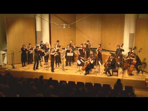 Strauss Metamorphosen (excerpt) | Sydney Camerata