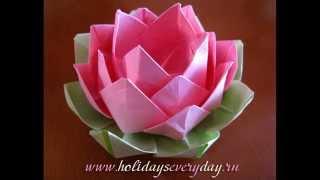 Lotus flower. Origami. Master Class.