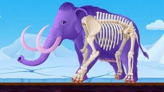 Đào Xương Hóa Thạch Voi Mammoth Và Học Tên Các Loài Động Vật Thời Tiền Sử – Game Vui Cho Bé