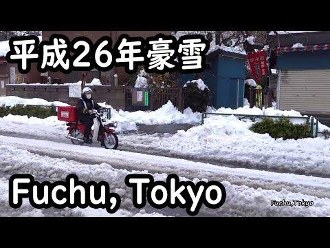 どか雪の東京府中(2014年2月15日)Tokyo suburb of heavy snow.