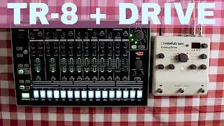 ROLAND TR-8 + ELEKTRON ANALOG DRIVE ~ Will They Pair? Ep.06