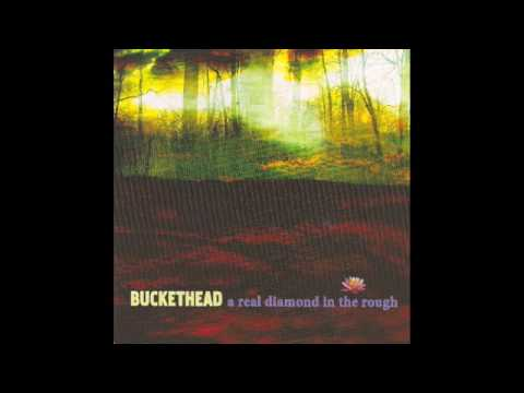 Buckethead-Separate Sky-A Real Diamond in the Rough