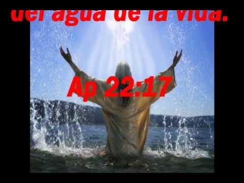 LA VERDAD SOBRE EL DIEZMO 100% BIBLICO