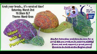 Giant snail race 550 19 Mar 2 Relay For Life Raglan Mardi Gras CC Race