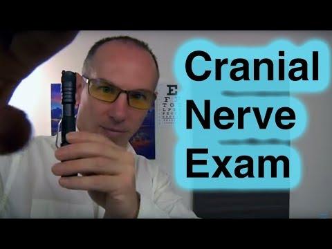 ASMR Cranial Nerve Examination Role Play Dr Dmitri