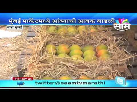 EU bans Indian Alphonso mangoes from May1