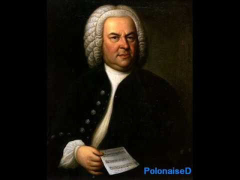 Bach Piano Concerto No 1 in D minor BWV 1052 Mvt 1