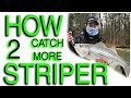 How to catch more Striper (Gallatin TN steam plant)! GoPro