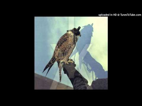 Iceage - Coalition