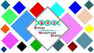 O-Level, Biology, Paper-I, Topic 4 Nutrition