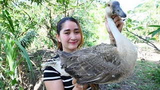 Yummy Goose Curry Recipe - Goose Cooking - Cooking With Sros