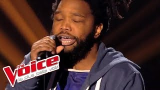 Britney Spears - Toxic | Spleen | The Voice France 2014 | Blind Audition