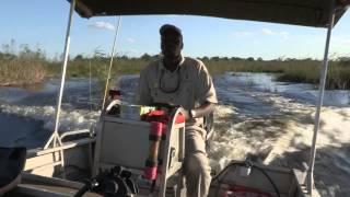 Botswana Safari Film Trip - Photos of Africa