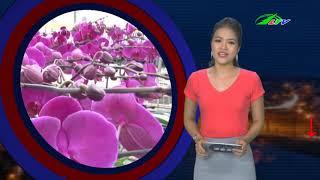 Dùng SÚNG Bắn CHẾT Nữ Sinh Rồi Vào Rẫy TỰ SÁT   Tâm Điểm 365   Lâm Đồng TV