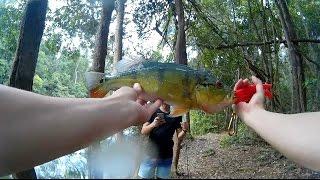 Jungle Fishing for Peacock Bass in Malaysia??!