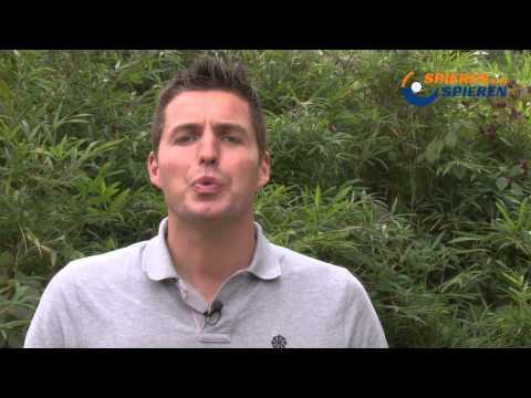Pieter van den Hoogenband opening 2521 Gezwoon zwemmen- zwembad Alblasserdam