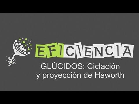 GLÚCIDOS: CICLACION Y PROYECCIÓN DE HAWORTH. Pirano Furano Alfa Beta Anomérico Silla Nave