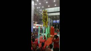 舞狮 Lion Dance @ Financial Park Labuan 16 February 2019