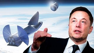 Everything We Need to Know about Elon