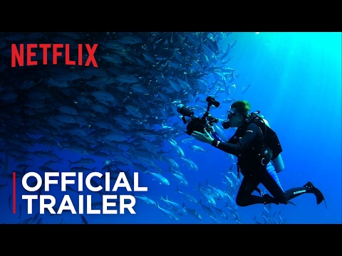 Mission Blue - Official Trailer - Exclusively on Netflix Aug 15