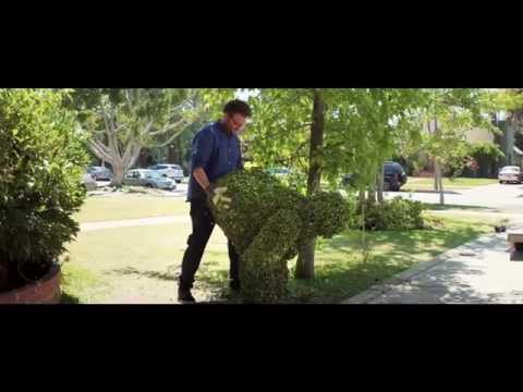 Neighbors - TV Spot 6