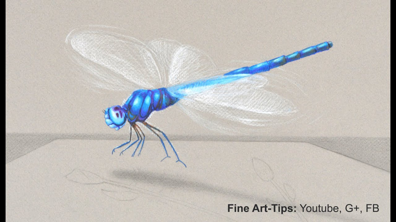 Fly Baby Drawings How to Draw a Dragon Fly in 3d
