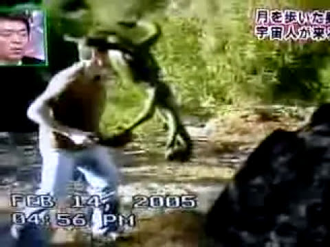 Unknown Alien Creature grabs a tourist face