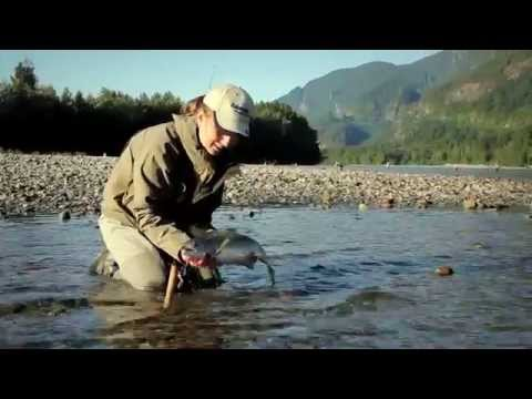 Fishing with Rod: Float Fishing for Pink Salmon