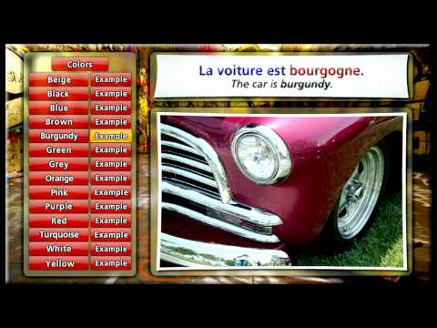 Learn French with Ouino: Les couleurs (Colors)