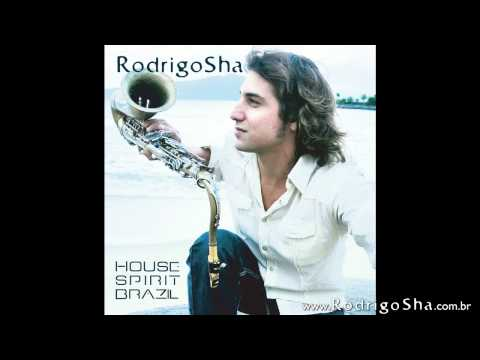 Asa Branca (Radio Mix) feat. Daniel Gonzaga - CD House Spirit Brazil - Rodrigo Sha