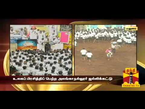 World Famous Alanganallur-jallikattu - Compilation2 (thanthi Tv) video