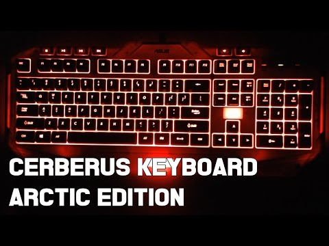 Asus Cerberus ARCTIC EDITION Review