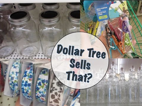 Dollar Tree Shopping!   New Products & Haul