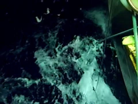 Video en los barcos pesqueros de espinel