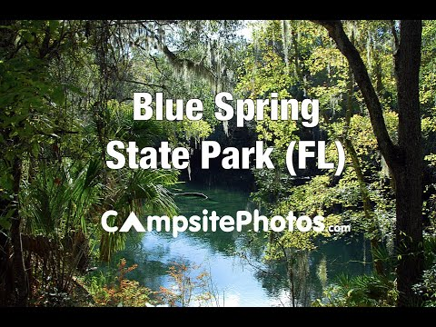 Blue Spring State Park, Florida Campsite Photos