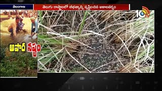 Unseasonal Rain damages Crops In Telugu States  News