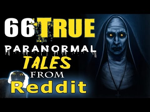 66 TRUE Scary PARANORMAL Stories from REDDIT [4 Hour Compilation]