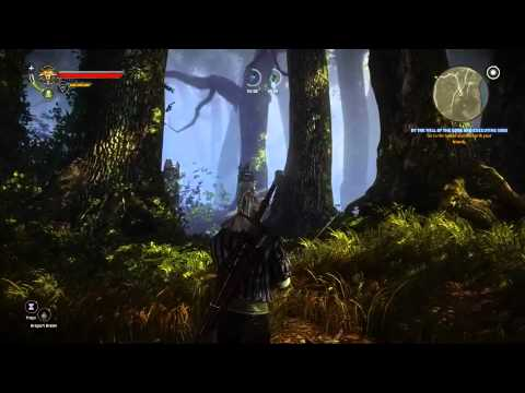 The Witcher 2: Assassin of Kings: Combat Overview