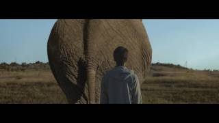 BEAUTIFUL CORRUPTION - Official Trailer