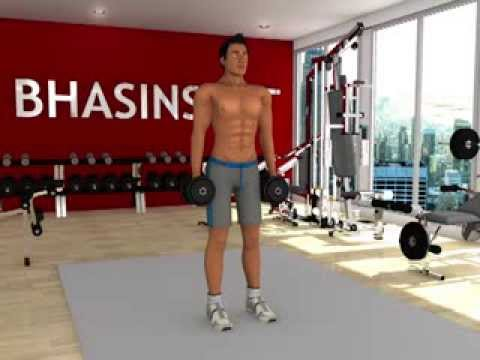 Personal Trainer : Weight Training - Shrug Image 1